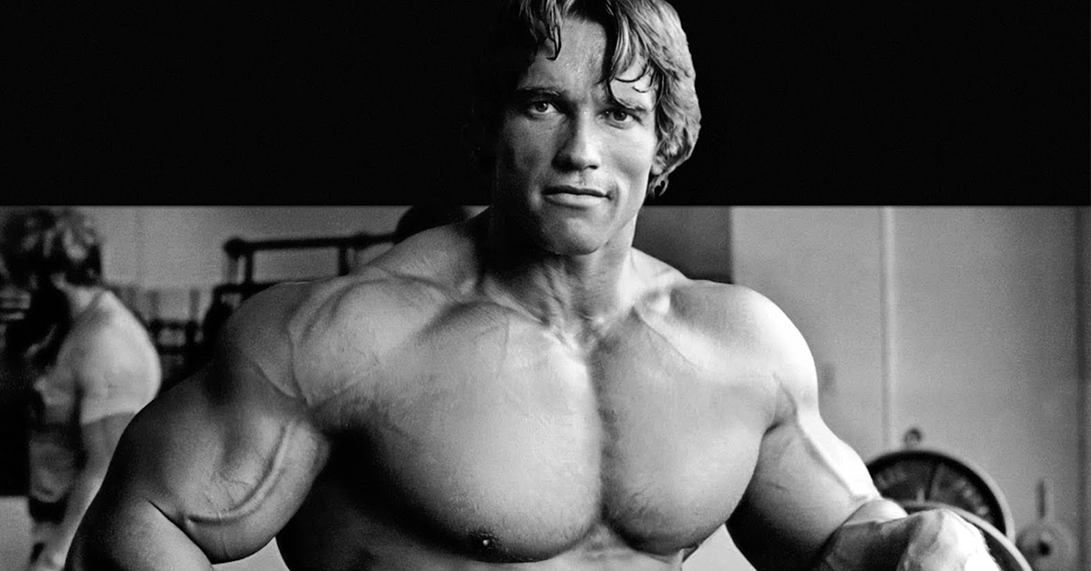 Arnold Schwarzenegger, portrait & biographie
